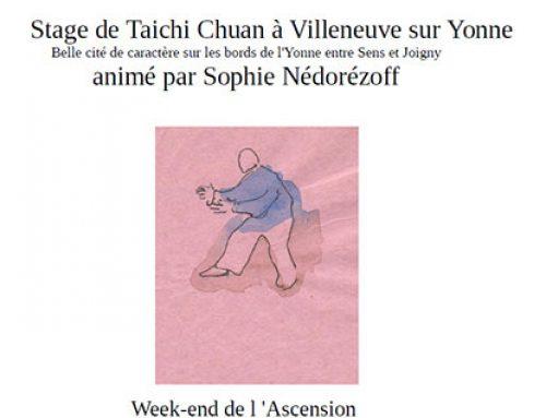 Stage de Taichi Chuan à Villeneuve-sur-Yonne