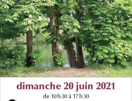 pique-nique 20 juin 2021